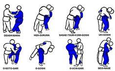 Quedas jiu jitsu / judô