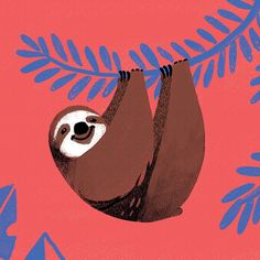Cute Sloth Illustration
