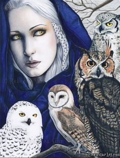 snow owl, barn owl, great horned owl, a screech owl with gray haired lady in a blue hooded cape:) Looks like wisdom abounds, if 'birds of a feather flock together!'