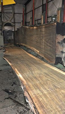 This Black Walnut log is over 16 feet long, has a straight shape and is loaded with curl from top to bottom! It shows fantastic color & grain with a small sapwood line. The board quality for a log of this size is amazing. It shows very few defects (excluding the pith boards) only an occasional knot or two. A great log for any project!