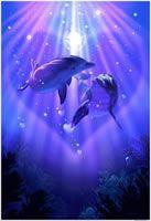 Dolphin Love by Lassen