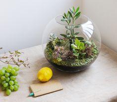 Créé par l'artiste-photographe Kali Vermès, Grow Little est un atelier spécialisé dans la création de terrariums poétiques.