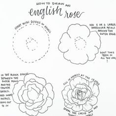 How to draw easy and amazing bullet journal doodles! how to doodle tutorials including flower doodles, animal doodles and much more! Easy Doodles Drawings, Easy Flower Drawings, Easy Disney Drawings, Flower Drawing Tutorials, Pencil Drawings Of Flowers, Flower Sketches, Draw Flowers, How To Draw Peonies, How To Draw Sunflowers