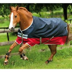 Find horse rugs, turnout rugs and flysheets at great prices. Equine Superstore stock rugs from top brands Amigo, Rambo and Weatherbeeta, Gallop, Masta and more . Browse our range of horse rugs or search for other ranges of horse equipment and riding gear. Equestrian Shop, Equestrian Outfits, Horse Supplies, Pet Supplies, Horse Exercises, Horse Rugs, Types Of Horses, Horse World, Horse Saddles