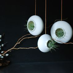 Set of three Round Hanging Air Planters - Handmade Fine Porcelain. $105.00, via Etsy.