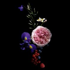 floral_guerlain_maquiagem_materia_prima_perfume