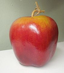 Apple gourds grow in the shape of an apple. It's truly amazing. (Gourds Gone Wild by CA)
