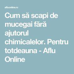 Cum să scapi de mucegai fără ajutorul chimicalelor. Pentru totdeauna - Aflu Online Permaculture, Diy And Crafts, Cleaning, Health, Pandora, Tattoos, Fitness, Medicine, Houses