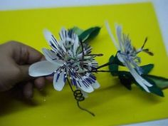 Paper Flower - Passion flower