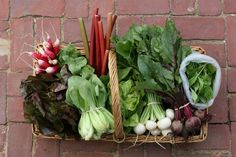 Having a share in a CSA is wonderful. | 31 Things To Do With Confusing CSA Vegetables