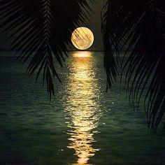 Mesmerising view of moon in Maldives - Imgur