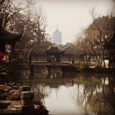 Hootsuite Mind Blown, China, Pictures, Photos, Porcelain, Grimm