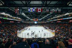 Halifax Mooseheads QMJHL Hockey - February 12, 2014 — Matt Healy Photography