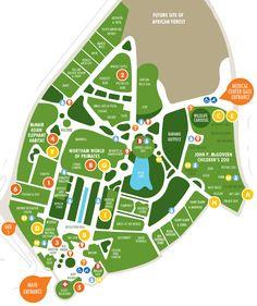 Houston Zoo Park Map Image Luis Alan Burke Houston Tx