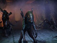 Aliens alien vs predator wallpapers alien vs predator download still from alien vs predator movie voltagebd Choice Image