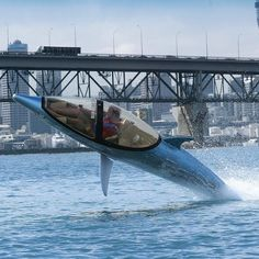 """""""Swim like a Dolphin"""" Innespace Dolphin The Prototype Demonstration Vessel"""