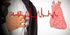 """""""obat herbal untuk aritmia jantung, detak jantung tak beraturan…"""