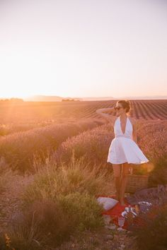Sunset picnic in Provence. Gives the exact location of this lavender field using Google Maps.