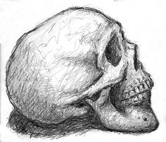 Skull Side Profile Drawing Can you draw like this?