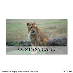 Lioness Sitting Double-Sided Standard Business Cards (Pack Of 100)
