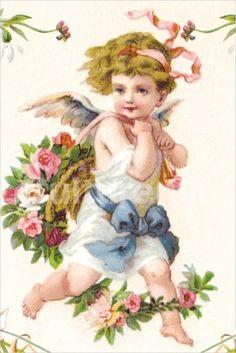 angels & cherubs                                                                                                                                                                                 Mais