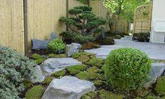 """""""japangarten in berlin, Garten-Bonsai, Schiefer-Steine, Moos, weißer Kies und Bambus"""""""