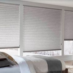 Honeycomb Shades, Budget Blinds, Cellular Shades, Living Room Windows, Blinds For Windows, Window Coverings, Wonderland, Walking, Curtains