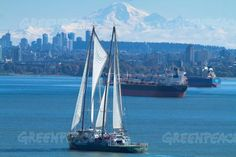 The Greenpeace iconic ship Rainbow Warrior arrives in North Vancouver. Rainbow Warrior, North Vancouver, Sailing Ships, San Francisco Skyline, Around The Worlds, Boat, Australia, Travel, Dinghy