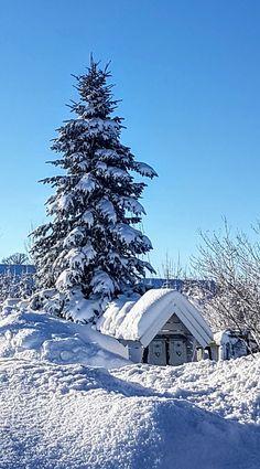 Winter wonderland  Barkåker/Norway