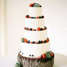 What a lovely cake. Fresh berries and succulents!