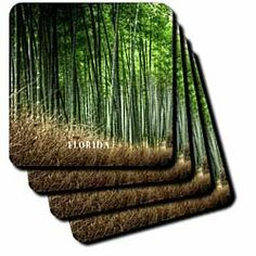 """Bamboo Forest In South Florida - Set Of 8 Ceramic Tile Coasters by 3dRose LLC. $29.99. Construction grade. High gloss finish. Comes with protective felt pads (packed separately). Dimensions: 4"""" H x 4"""" W x 1/4"""" D. Not absorbent. Bamboo Forest In South Florida Coaster is a great complement to any home décor. Soft coasters are 3.5"""" x 3.5"""", are absorbent, and can be washed. Ceramic coasters are 4.25"""" x 4.25"""", non absorbent and come with felt corner pads. Available in sets o..."""