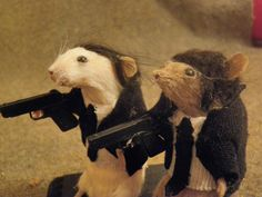Taxidermy Pulp Rodents van TheCurious13 op Etsy, $65.00