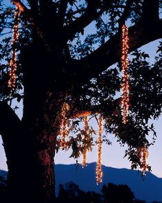 Create icicles that light up the night sky this holiday season.