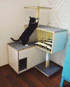 scratching post, cat, stuff for cats, design for cat, drapak, domek dla kota, Viikuna, yellow,  viikuna.cat@gmail.com