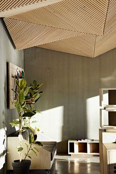 ORIGAMI-INSPIRED CEILINGS // ASSEMBLE STUDIO // AUSTRALIA