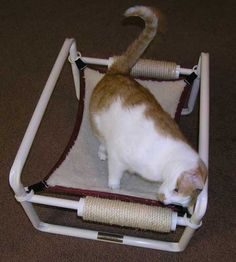 Cat Enclosures, Cages, Climbers, Condos, Crates & Beds :: Single Cat Hammock - Pet Beds, Enclosures and Creature Comforts