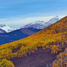 There is still some #yellow around #CrestedButte #fall #mountainlife  Photo: Chris Segal