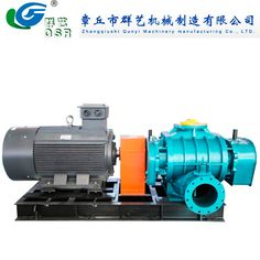 Special Gas/Chemical Gas/Natural Gas Roots Blower