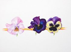 Image result for watercolor pansy tattoo