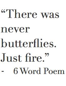 There was never butterflies. Just fire.