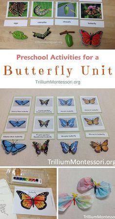Preschool Activities for a Butterfly Unit