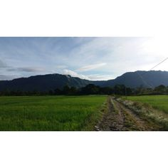 Sky, hill, and field Lontung, Samosir Island, North Sumatera