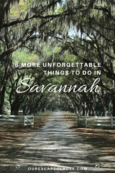 6 MORE Unforgettable Things to Do in Savannah - Travel Visit Savannah, Savannah Georgia, Savannah Chat, Tybee Island Georgia, Atlanta Georgia, Georgia Us, Savannah Smiles, Georgia Girls, Vacation Destinations