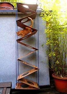 Need a cat ladder for a small space? Here's an entire blog on Cat Ladders! You can even email a picture of yours and have it included. | Tiny Homes