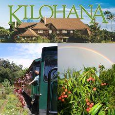 Kilohana Plantation: Tour Kauai's Sugar Era by Train, shop and enjoy the great luau Kalamaku, great food and the mai tai's best ever!