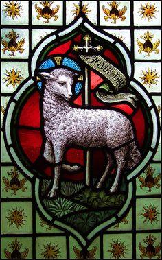 Lamb of God | Flickr - Photo Sharing!