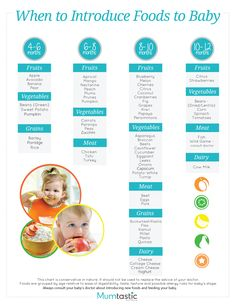 Introducing Solids: A Month-by-Month Schedule