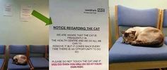 You are still reading this post. | 26 Signs That Won At Signs
