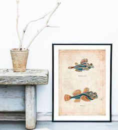 Fish Vintage neo retro animals sea drawing por SoulArtCorner