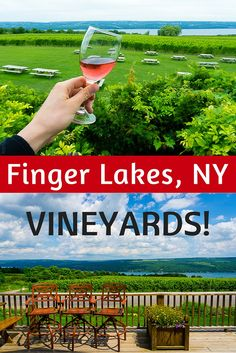 Finger Lakes Wine Country in central New York is known for beautiful vineyards. See why they are fun for the whole family, and get recommendations for the best ones to visit during travel to the region!